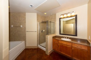 Two Bedroom Apartments for Rent in Houston, TX - Apartment Bathroom with Shower Stall & Tub